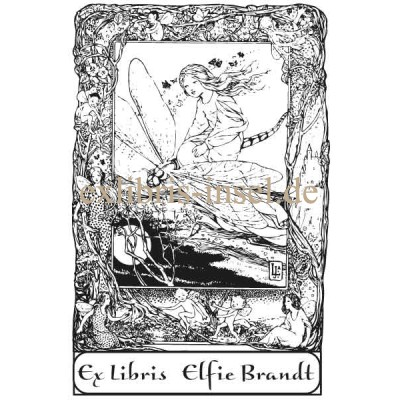 Bookplate Elf and Dragonfly