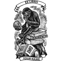 Bookplate monkey looking at a human skull