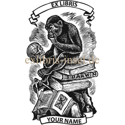 Bookplate chimpanzee looking at a human skull sitting on stack of books