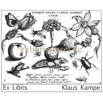 Bookplate cancer, butterfly, frog